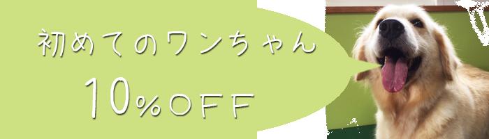 初めてのワンちゃん500円OFF‼